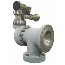 Model 600-PO - Steam Safety Valve